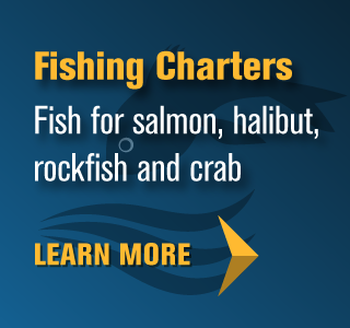 Fishing Charters - Learn More